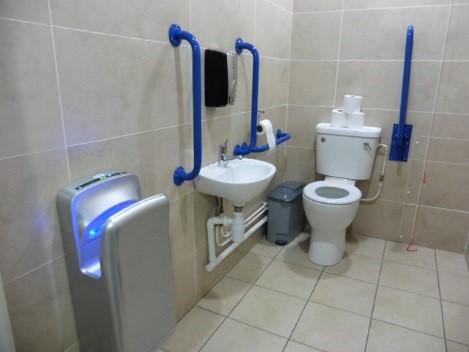 Access Audit Image - Disbaled Bathroom