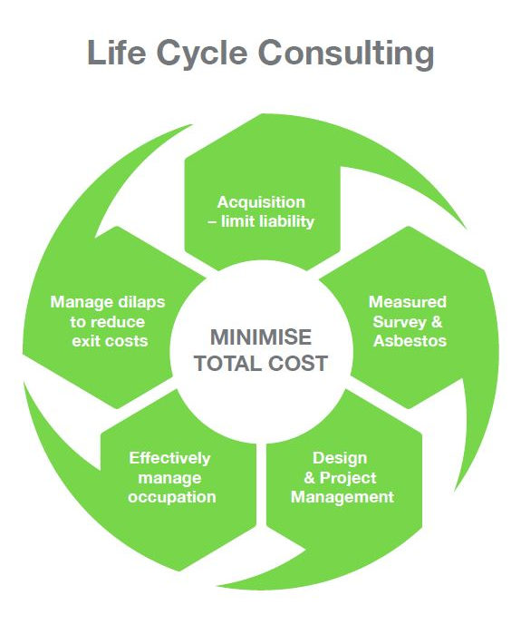 Lifecycle Consulting Image